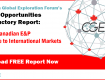 CGEF Global Opportunities: Introductory Report