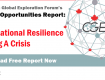 The Global Opportunities: International Resilience During A Crisis